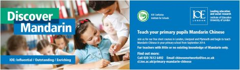 Primary Discover Mandarin TES  ad