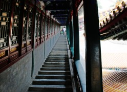WINNER - Summer Palace Stairway by Alex Gower